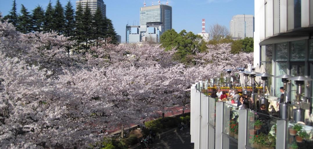Tokyo Midtown 東京ミッドタウン (article by amuzen)