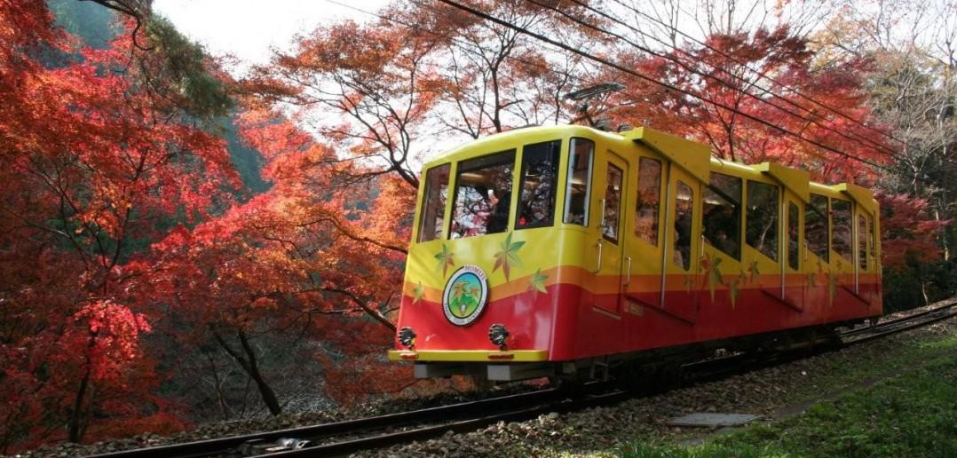 高尾山もみじ祭り Mt Takao (amuzen 記事)