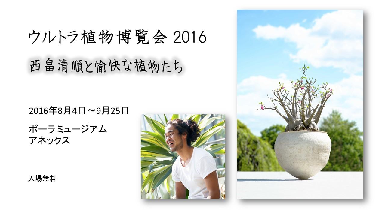 ultra plants expo 2016