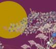 月見の会・萩まつり 2019 向島百花園