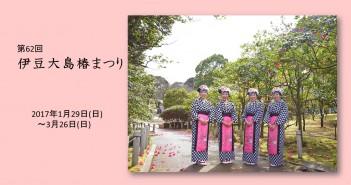 第62回 伊豆大島椿まつり (amuzen article)
