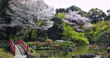大江戸紀尾井町桜まつり ホテルニューオータニ 東京 (amuzen article)