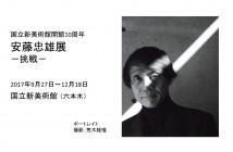 国立新美術館開館10周年 安藤忠雄展-挑戦- (amuzen article)