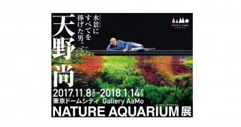 天野尚 NATURE AQUARIUM展 (amuzen article)