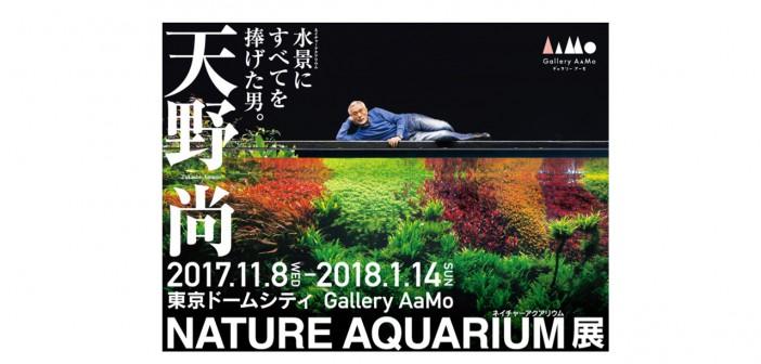 天野尚 NATURE AQUARIUM展 (amuzen article)