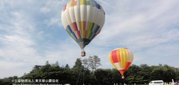 代々木公園 50周年記念イベント (amuzen article)