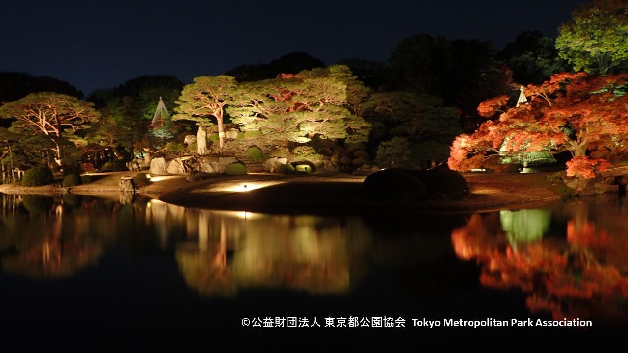 写真提供: 公益財団法人 東京都公園協会
