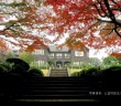 旧古河庭園 紅葉イベント2017 (amuzen article)