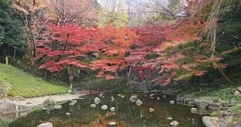 小石川後楽園 紅葉イベント2019