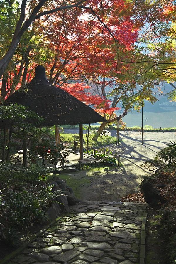 小石川後楽園 紅葉イベント2018