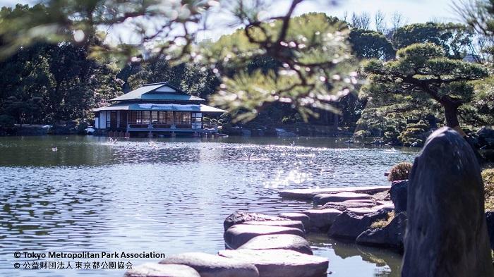 清澄庭園 正月イベント2019
