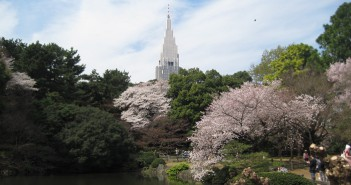 新宿御苑のお花見 2019
