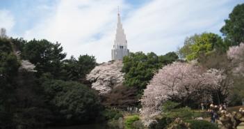 新宿御苑のお花見 2020