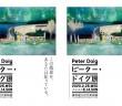 ピーター・ドイグ展 東京国立近代美術館