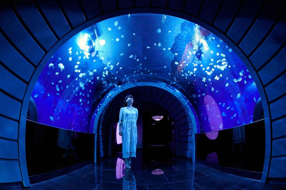 サンシャイン水族館「海月空感(くらげくうかん)」