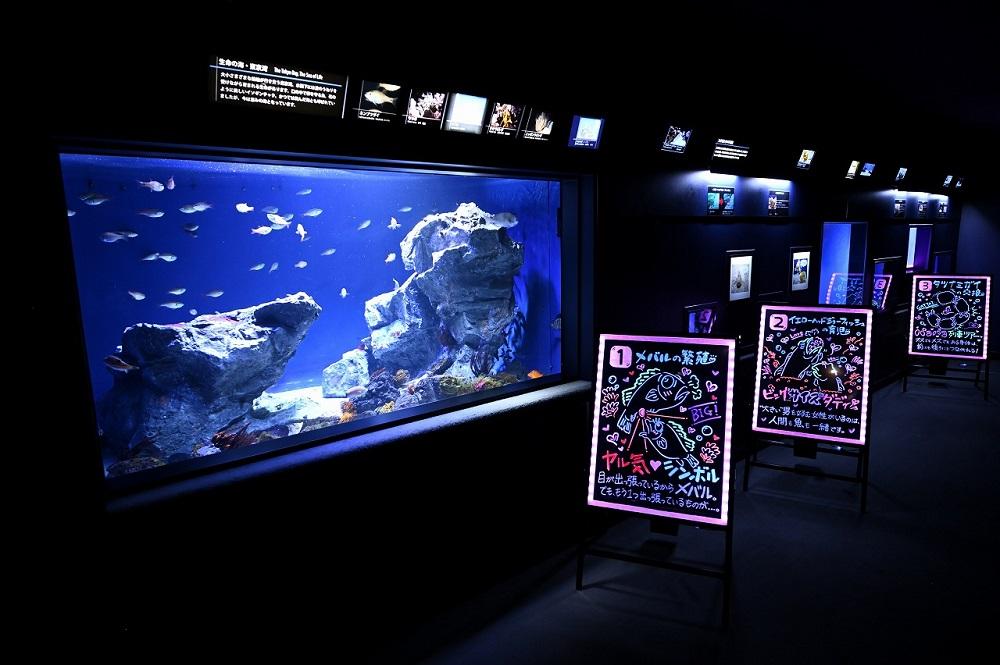 夜のサンシャイン水族館 もっと♡性いっぱい展
