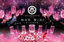 桜金魚 舞い泳ぐ アートアクアリウム美術館