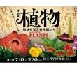 特別展「植物」 国立科学博物館