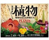 「植物 地球を支える仲間たち」 国立科学博物館